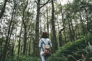 Интересный случай с русскоязычным дедушкой в американском лесу
